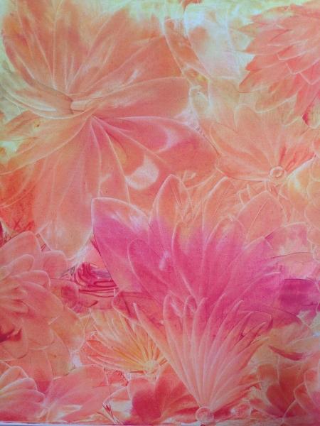 Canvas rosa